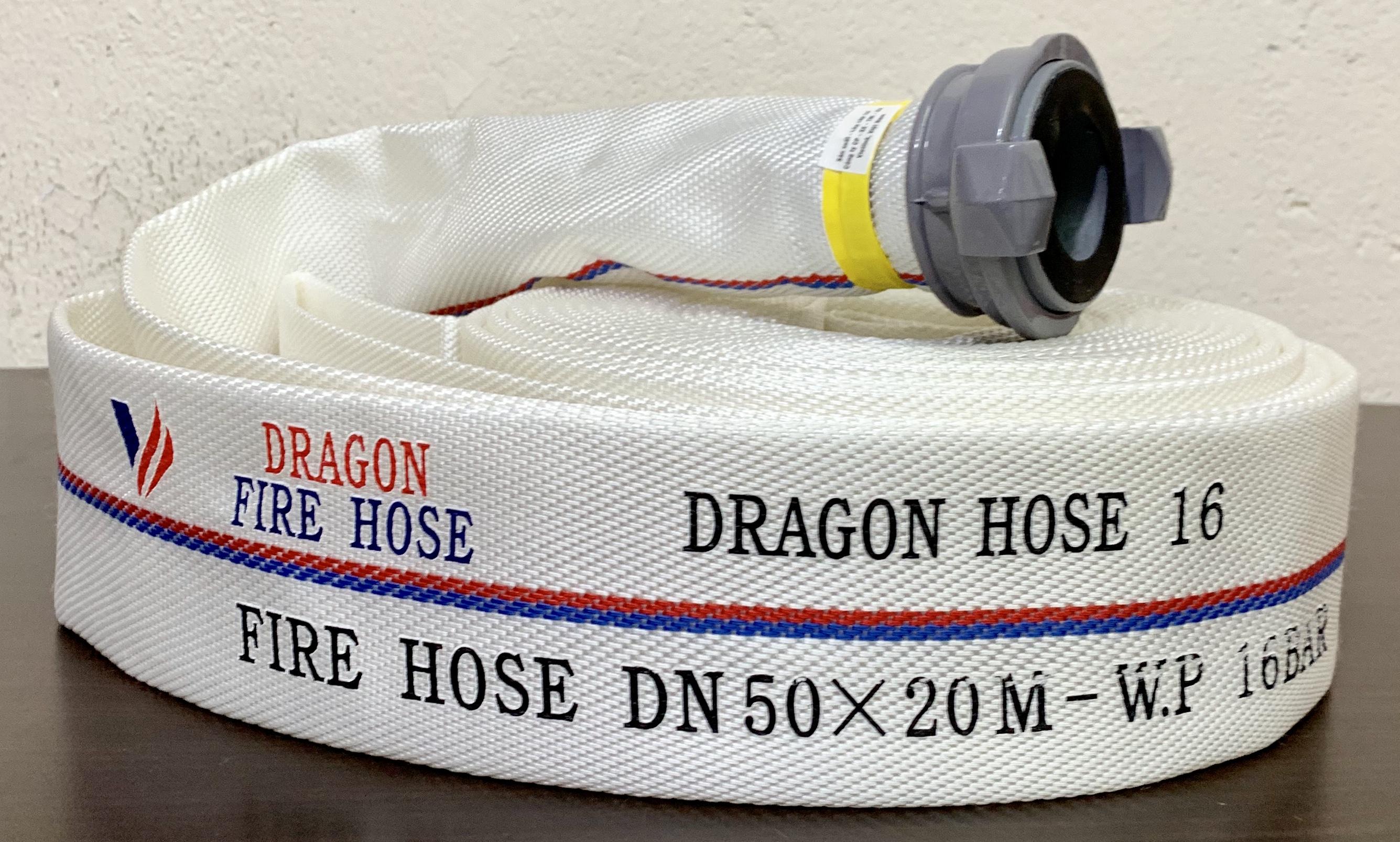 Hình Vòi DRAGON DN 50